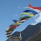 mountain flags by Shai Biran