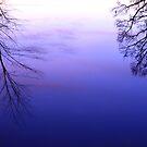 Pond Reflection at Dusk by JGetsinger