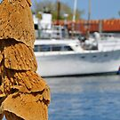 Sponges on the Boat by joevoz