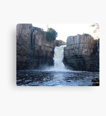 high force waterfall Canvas Print