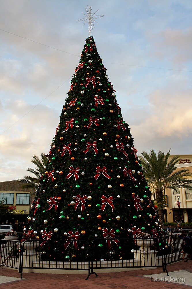 A Florida Tree by Laurie Perry