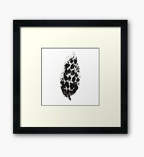 pine cone (haiga XXI) Framed Print