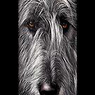 Wolfhound iPhone case by Elena Kolotusha