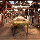 Toganmain Fleece Table by David Haworth