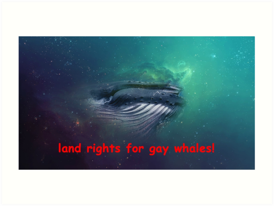 rights gay whales for Land
