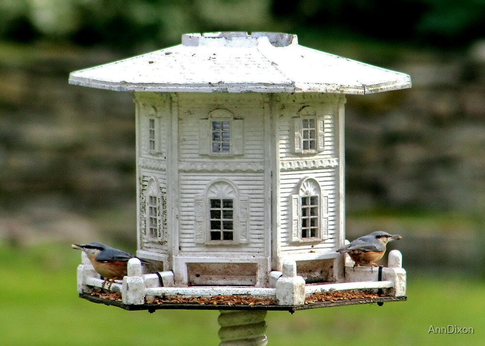 Nuthatch Residence by AnnDixon