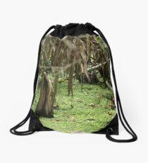 Cypress Stump Drawstring Bag
