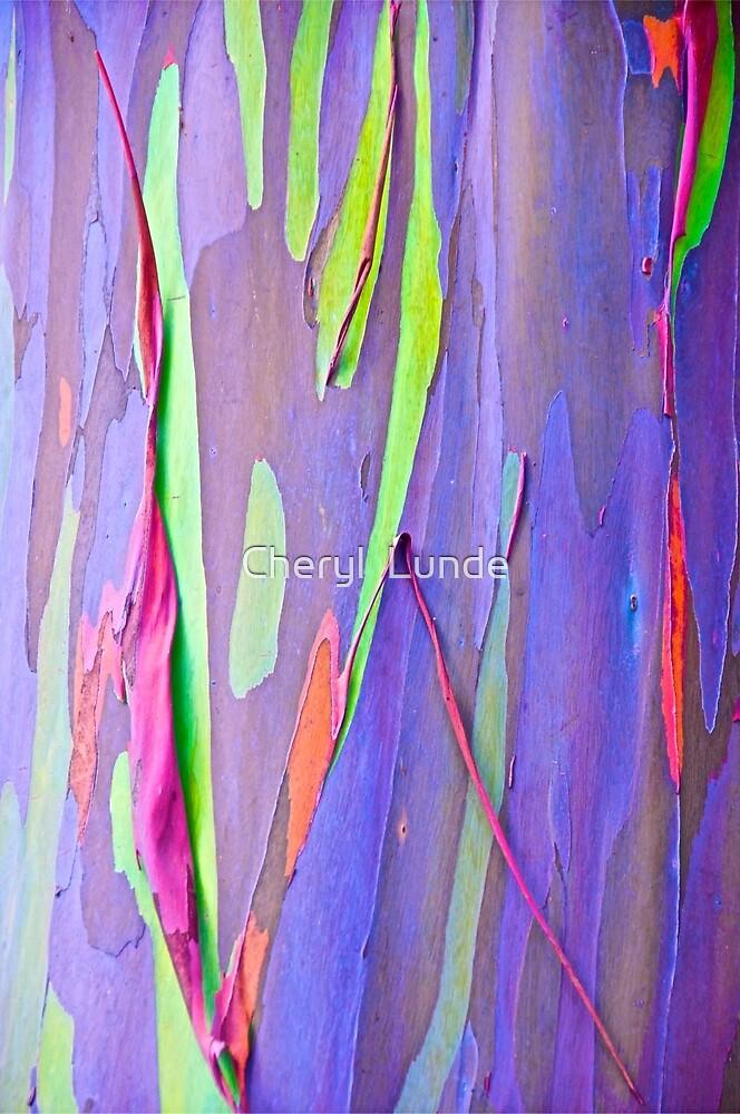 Rainbow Gum by Cheryl  Lunde