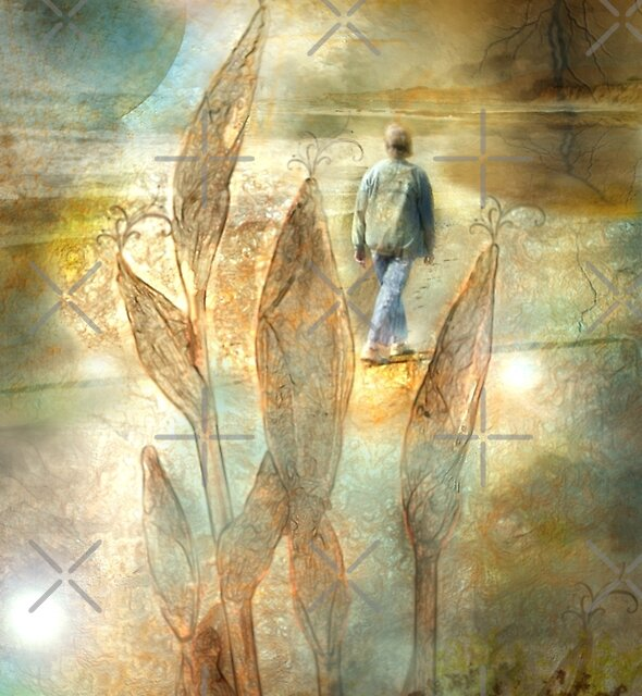 Visit to An Unknown World - Image and Poem by CarolM