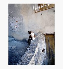 An Italian Afternoon Photographic Print