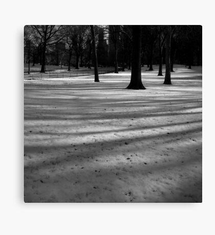 fresh snow, central park, nyc Canvas Print