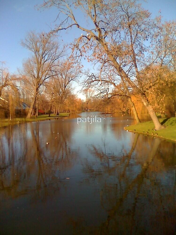 Sun in January so welcome! by patjila
