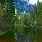 YOSEMITE FALLS REFLECTION  by Elaine Bawden