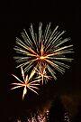 Fireworks II by PhotosByHealy