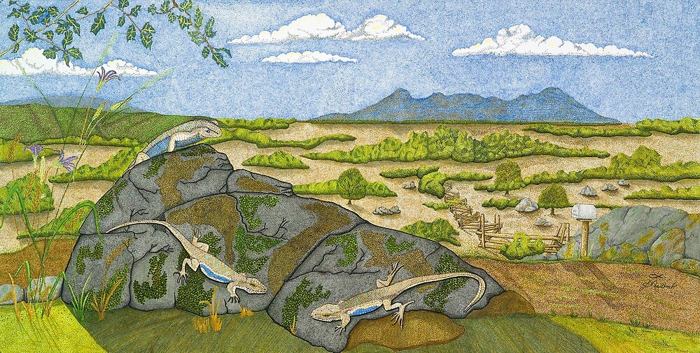 Little Lizards by Judy Newcomb