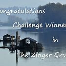 Zingers Group Banner by MaluC