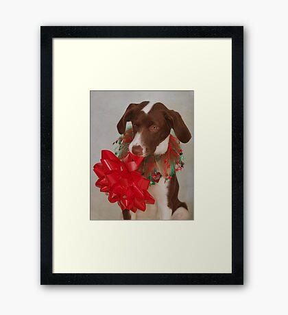 Christmas Pup Framed Print