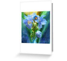 "Himalayan Blue Poppy Bouquet ""Blue Poppy Bouqu..."