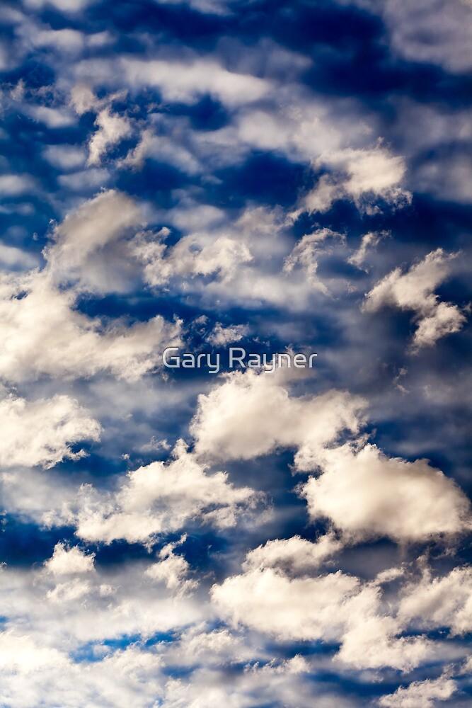 Cloud by Gary Rayner