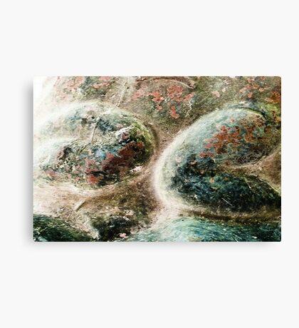 Untitled #21 Canvas Print