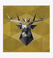 The Crowned Stag Photographic Print