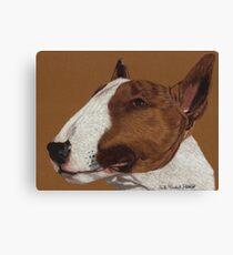 Bull Terrier Vignette Canvas Print