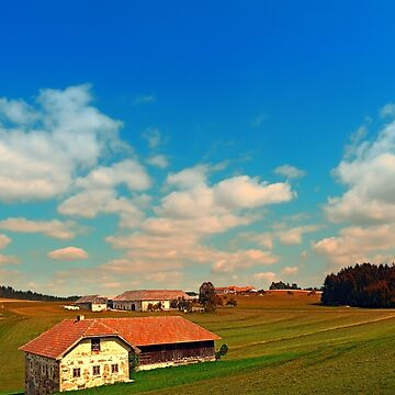 Countryside life with blue cloudy sky | landscape photography by patrickjobst