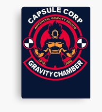 Gravity Chamber Canvas Print