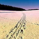 Cross country skiing   winter wonderland   landscape photography by Patrick Jobst