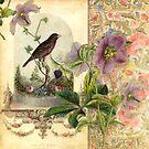 The Pet Bird by Aimee Stewart