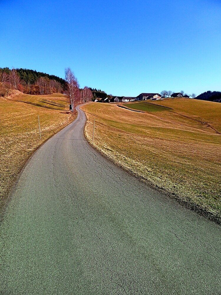 Country road through rural scenery | landscape photography by Patrick Jobst