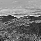 East of The Rockies  by wittgraham