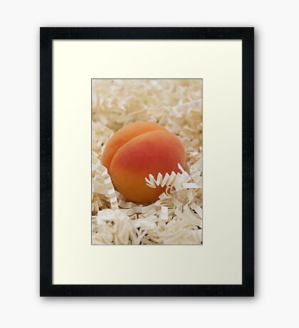 Apricot Framed Print