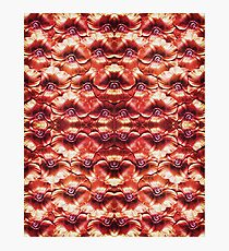 Real Flowers Pattern Photographic Print
