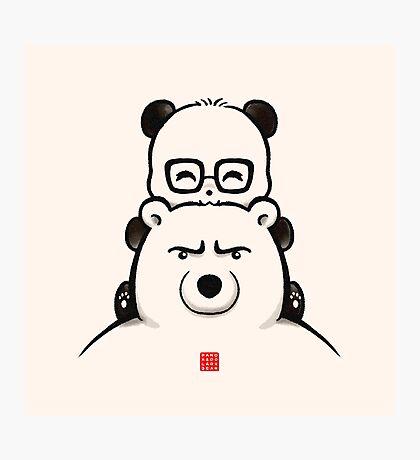 Panda And Polar Bear Photographic Print