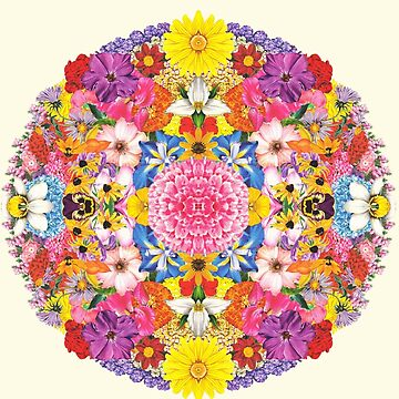 Flower Mandala  by AustinHolton
