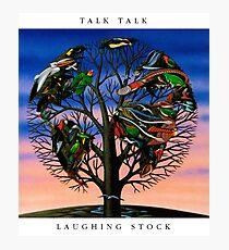 Talk Talk - Laughing Stock Photographic Print