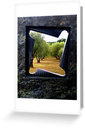 Window on the olive grove by Janet GATHIER-COOMBER