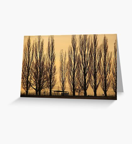 Misty Morning Rise Greeting Card