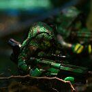 Jungle Spec Op 3 by Shobrick