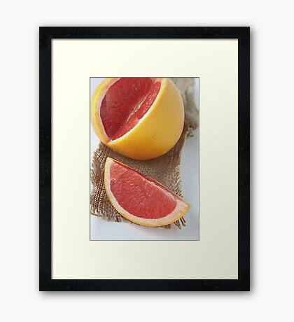 Ruby grapefruit Framed Print