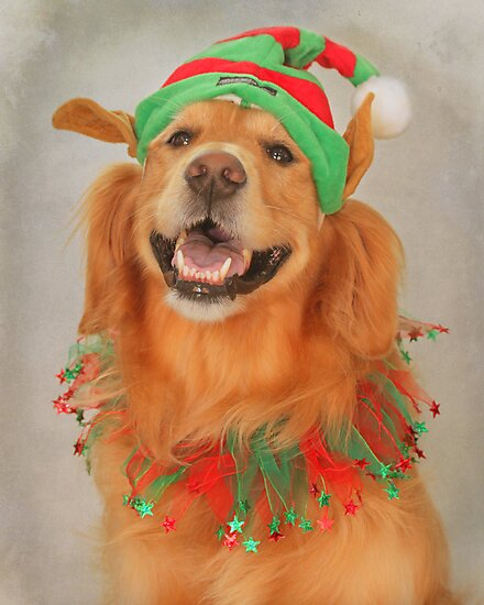 """"""" May Your Days Be Merry And Bright~ And May All Your Christmas Hats Fit Right """" by Renee Blake"""