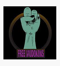 Free mudokons Photographic Print