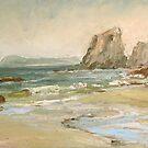 Mendocino Coast by Patricia Elliott