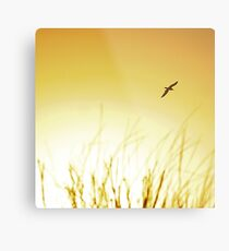 Yellow skys Metal Print