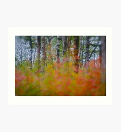 Early Autumn  -  When an early autumn walks the land and chills the breeze and touches with her hand the summer tree. by Brown Sugar . Favorites: 6 Views: 421. Thx! Thank you very much !  Art Print