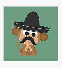 Monito Bandito Photographic Print