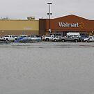 Lake Walmart by WildestArt