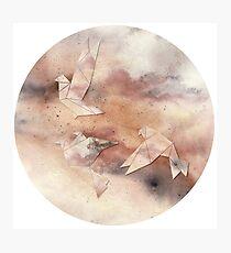 Pastel Origami Birds Photographic Print