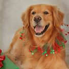 Abigail's Christmas Portrait by Renee Blake